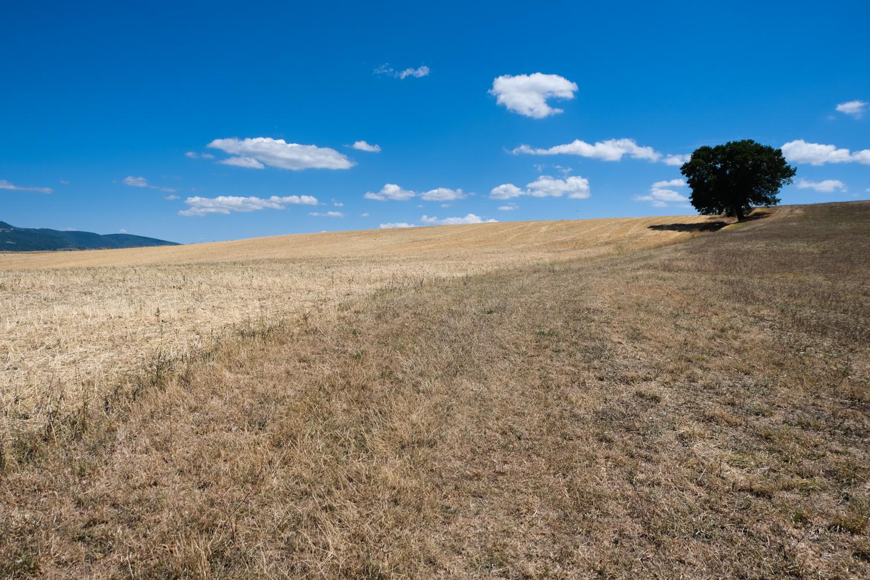 Cammino nelle Terre Mutate viaggio in centro Italia a piedi appennino