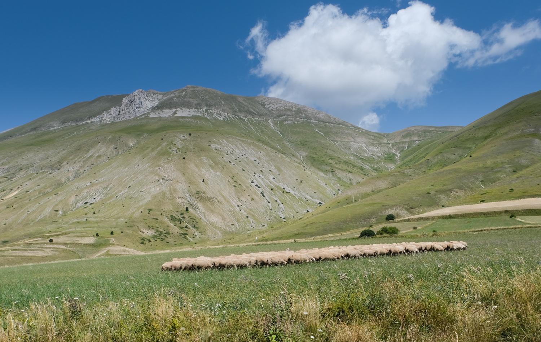 Cammino nelle Terre Mutate viaggio in centro Italia a piedi monte Vettore