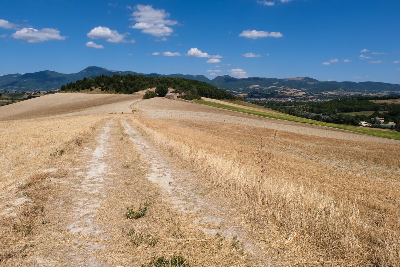 Cammino nelle Terre Mutate viaggio in centro Italia a piedi appennino panorama