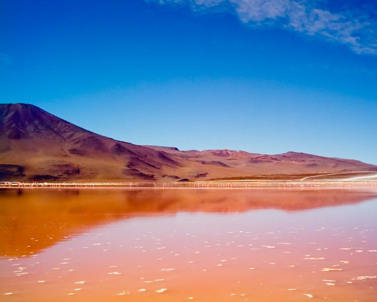 Bolivia laguna colorada