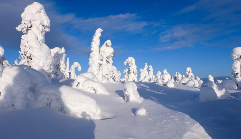 Finlandia lapponia inverno