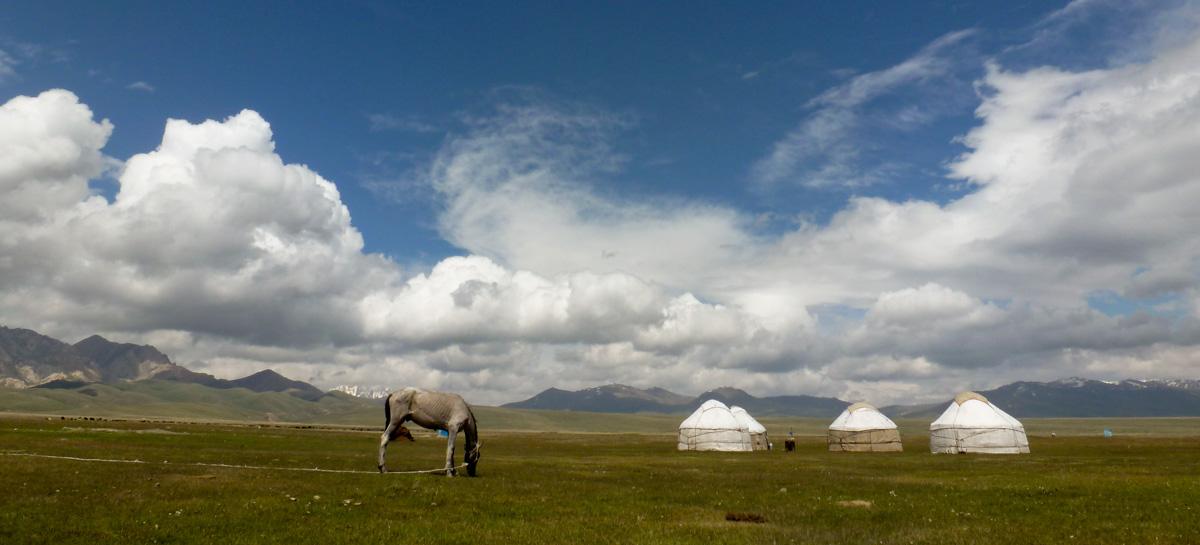 Kirghizistan Sary Mogol