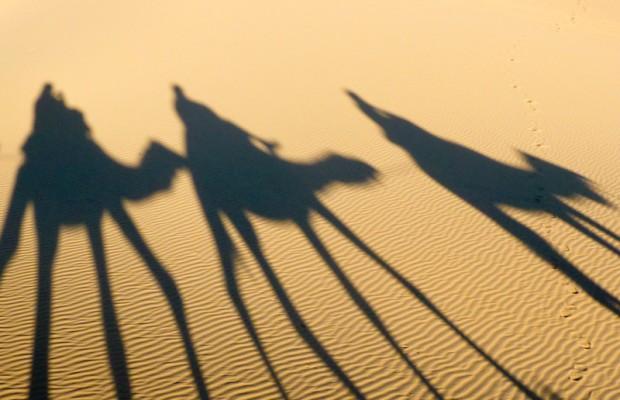 Marocco cammelli ombre nella sabbia