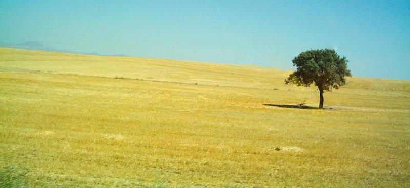 Turchia paesaggio