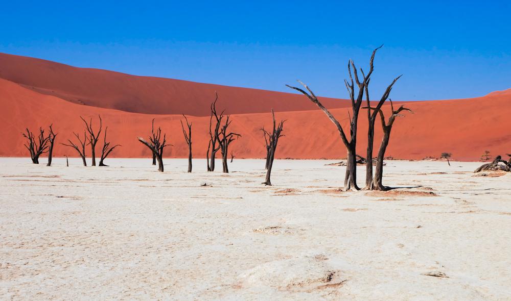 Viaggio in Namibia dead vlei
