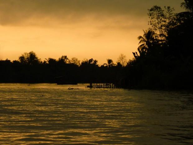 Mekong alba