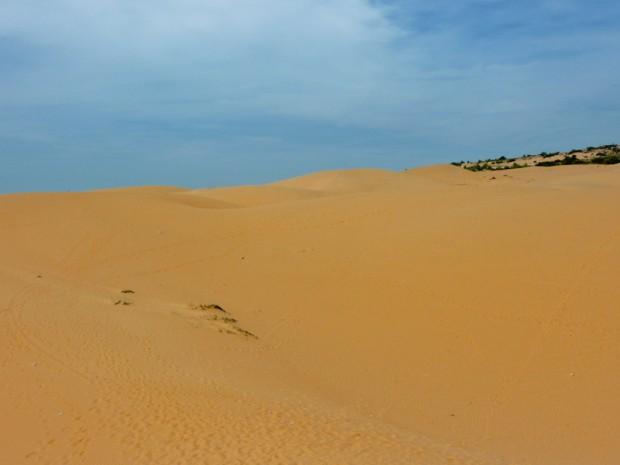 Vietnam dune