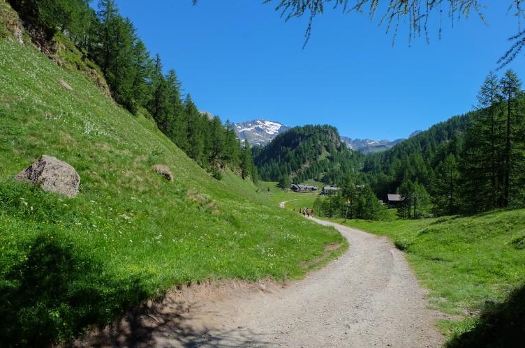 alpe devero sentiero trekking