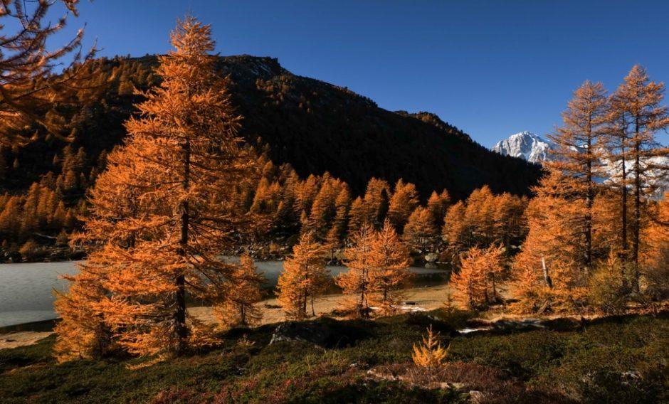 autunno lago arpy valle aosta