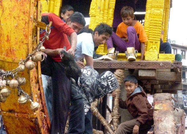 bhaktapur sacrificio