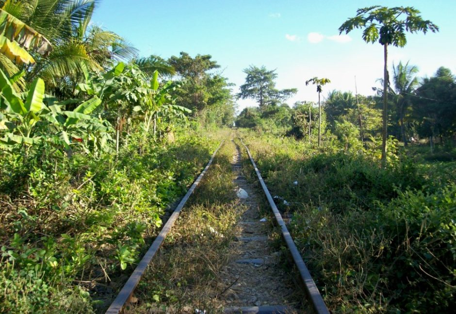 Cambogia: il treno di bambù