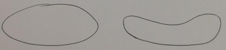 forma degli gnocchi di patate