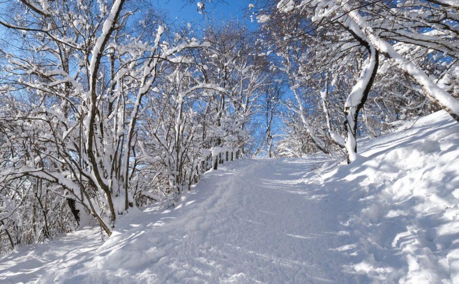 gita ciaspole monte bollettone con racchette da neve
