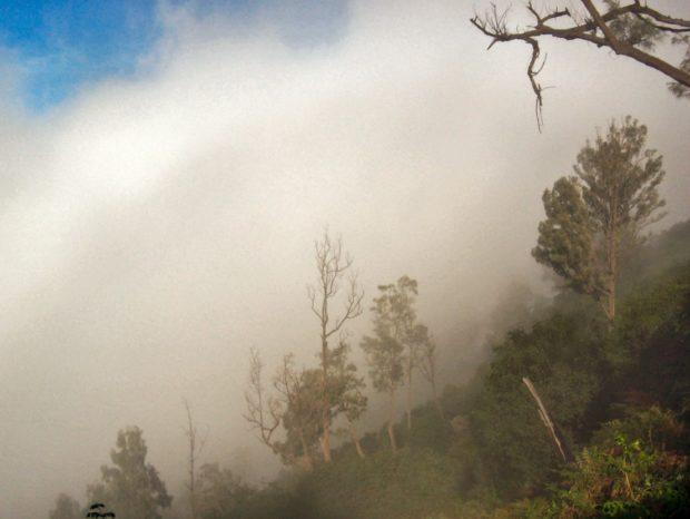 indonesia trekking nebbia