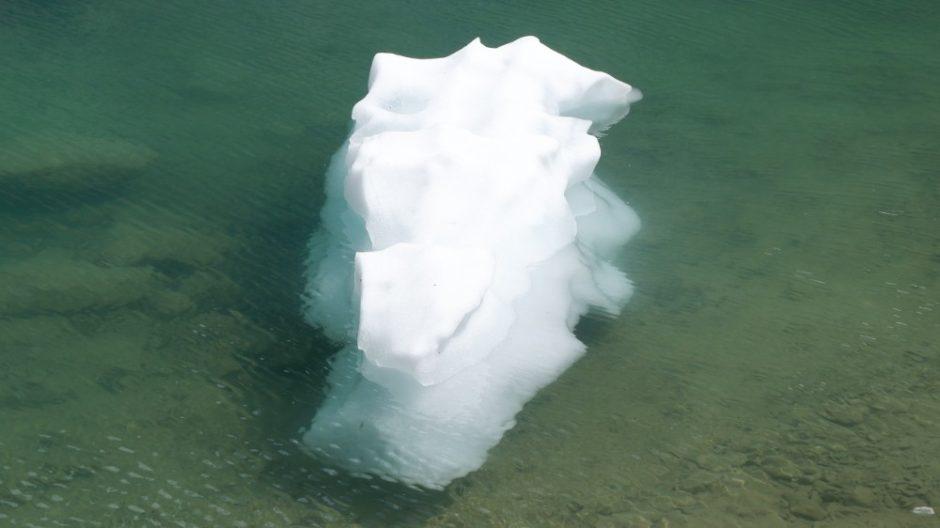 lago di san grato coccodrillo di ghiaccio