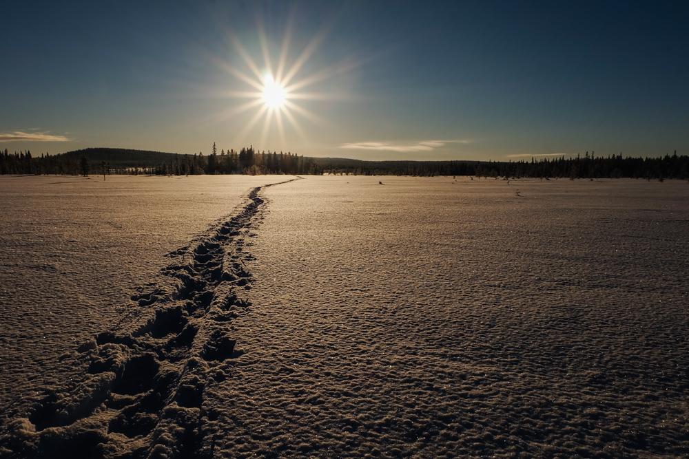 lago ghiacciato viaggio inverno lapponia pallas yllastunturi