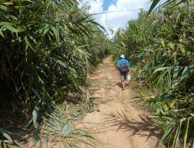 laos trekking muang sing