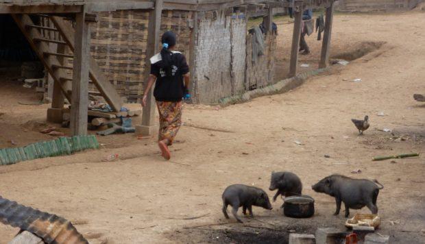 laos villaggio muan sing