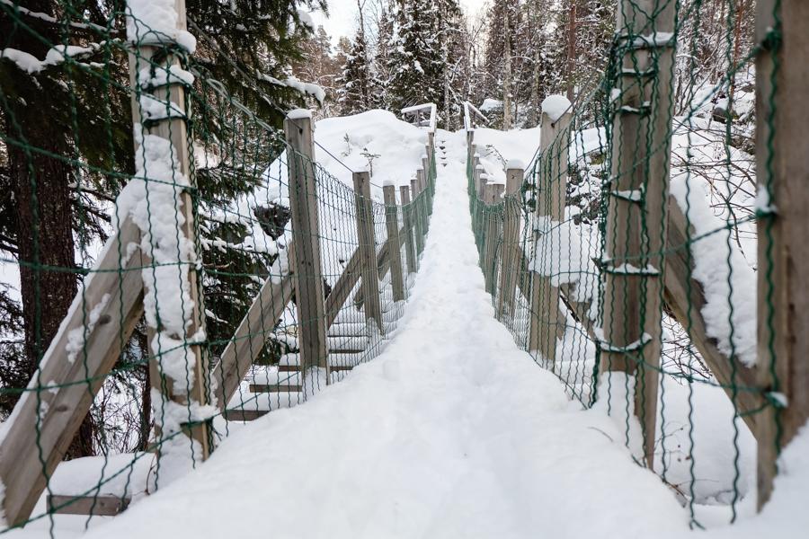 lapponia inverno oulanka ponte sospeso