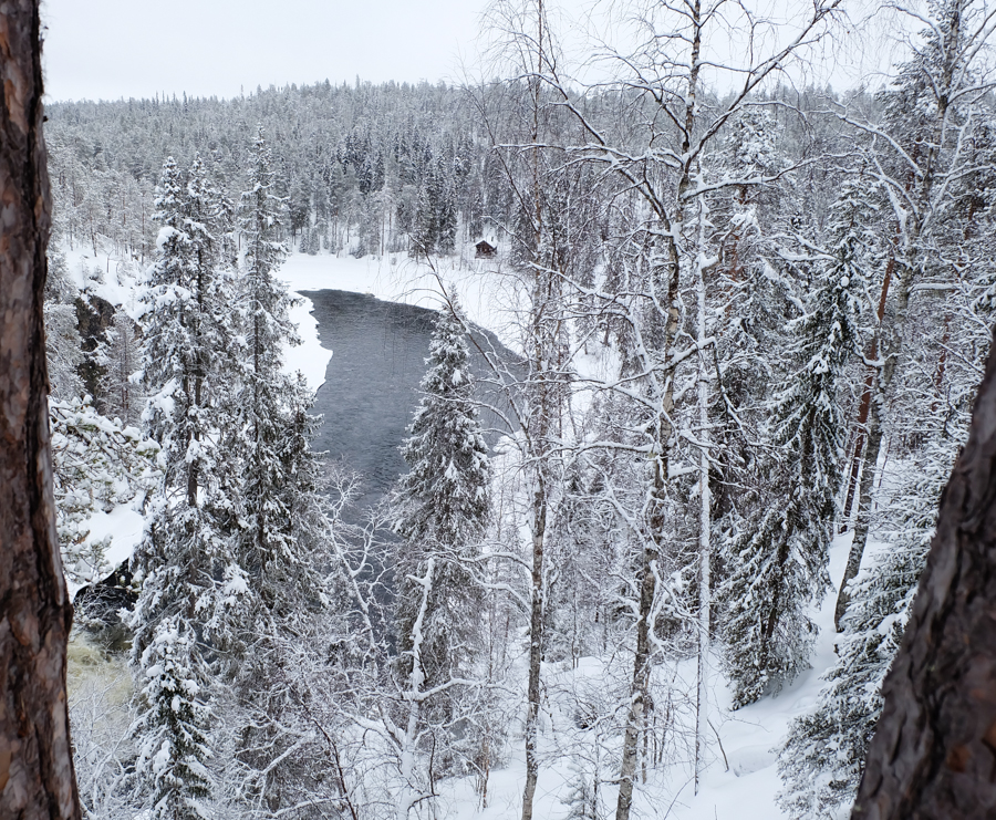 lapponia inverno oulanka neve