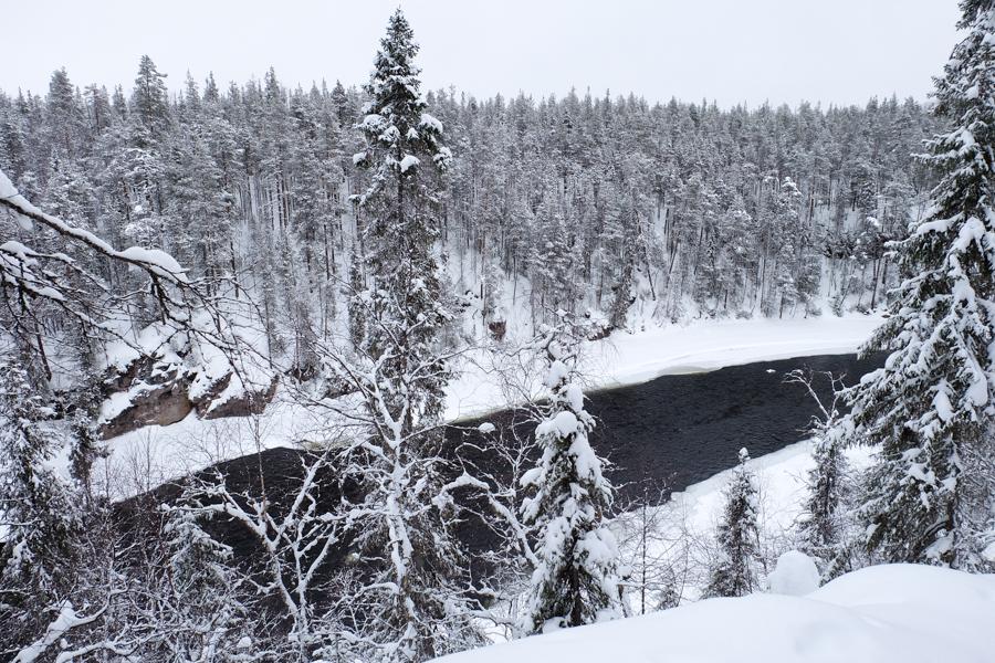 lapponia inverno oulanka panorama