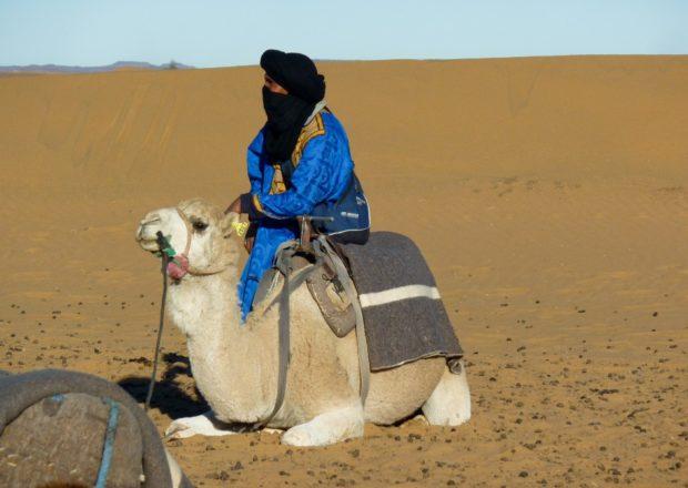 merzouga cammello deserto sahara