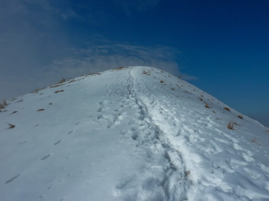 monte bollettone trekking