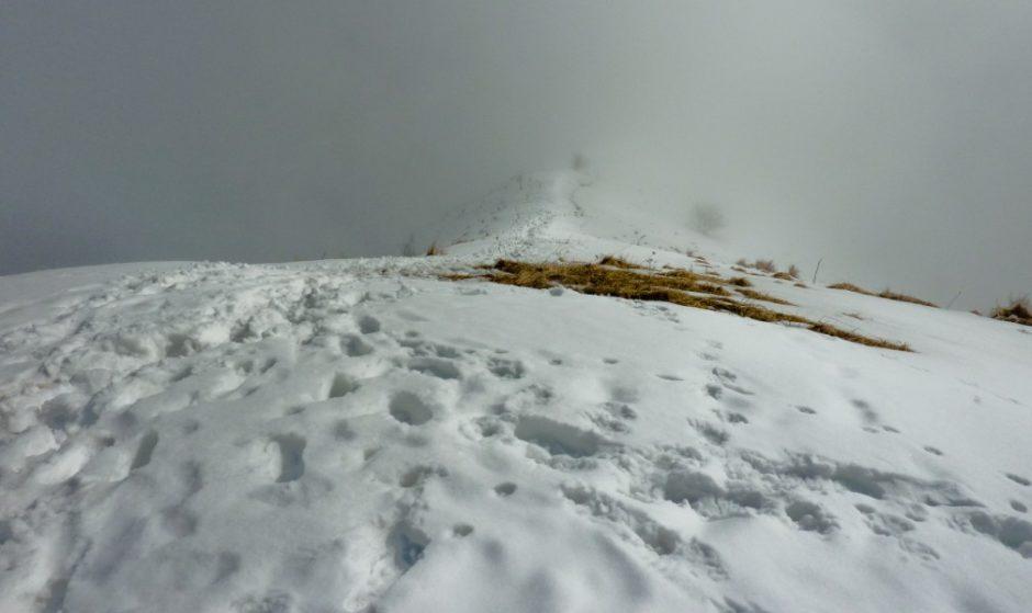 monte bollettone nebbia trekking