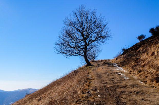 monte san primo sentiero
