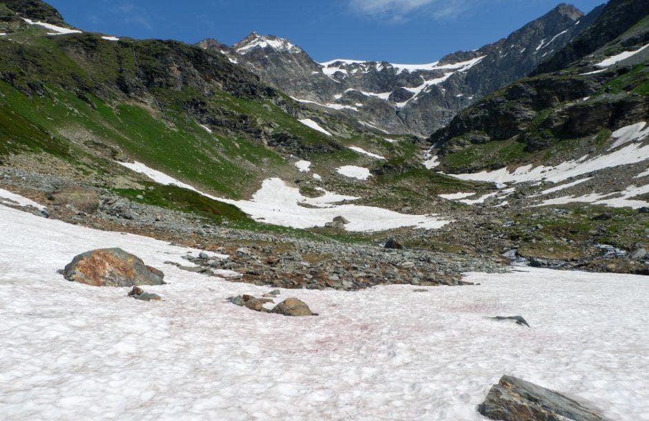 nevaio trekking lago di san grato valgrisanche sentiero escursione valle aosta