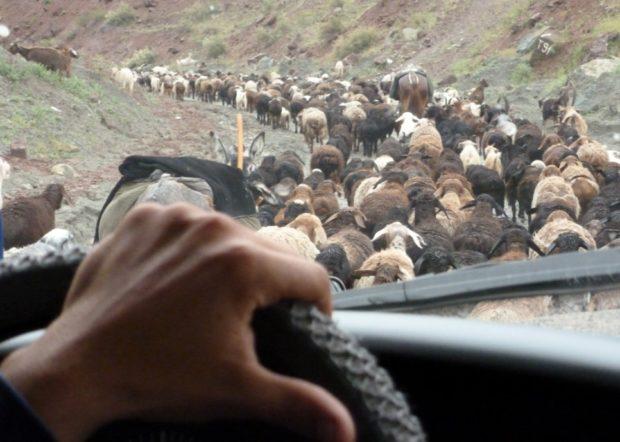 pamir highway tagikistan gregge