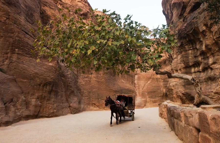 Giordania: organizzare la visita di Petra