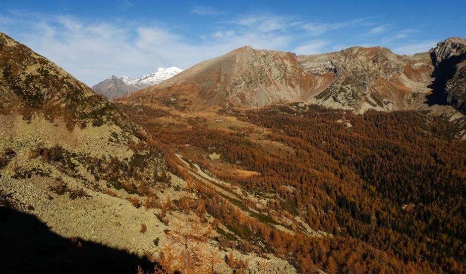 salita cima verosso val bognanco gita autunno