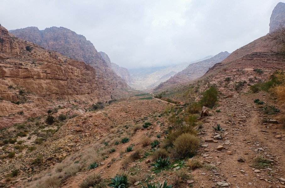 sentiero dana giordania trek