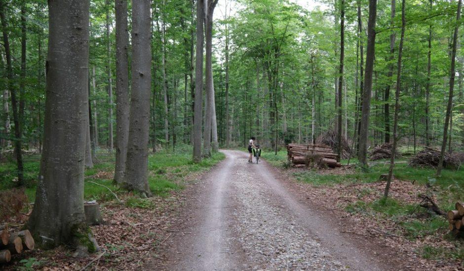 strada romantica bicicletta baviera tappa landsberg am lech augusta 1