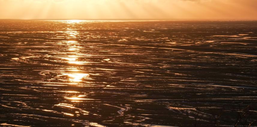 svartifoss cascata ghiaccio viaggio islanda inverno
