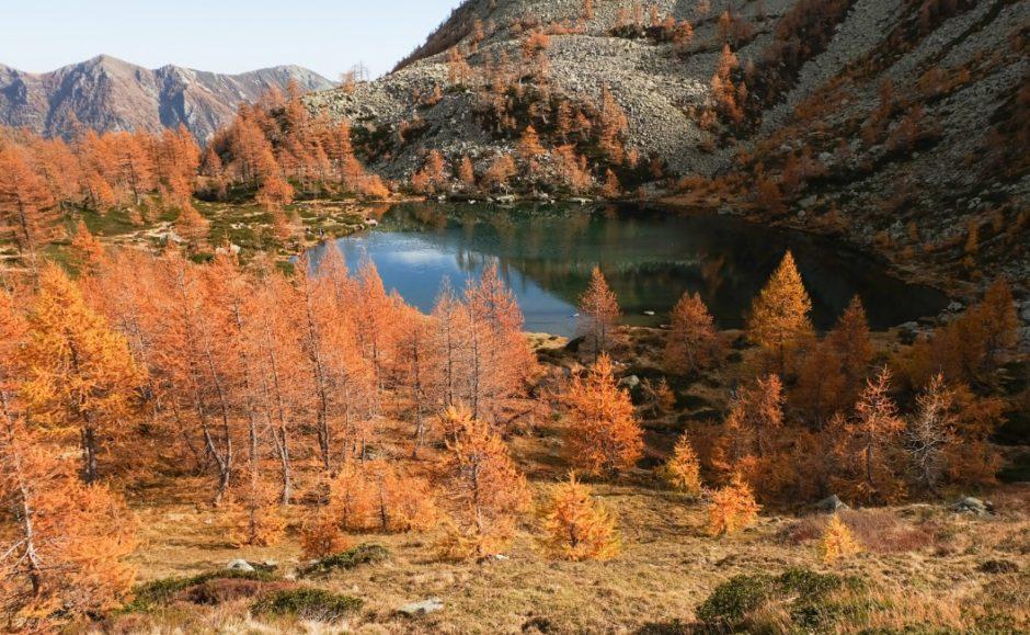 trekking cima verosso val bognanco lago autunno
