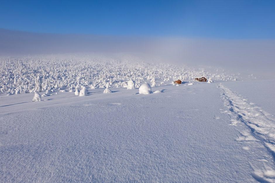 trekking in inverno lapponia