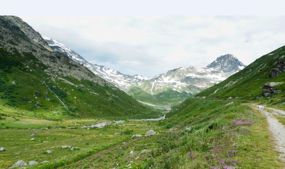 trekking lago di san grato valgrisanche sentiero escursione valle aosta