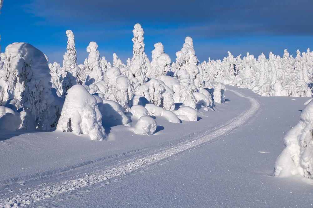 tykky lapponia pallas yllastunturi inverno finlandia