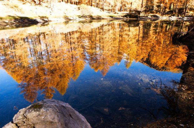 val di rhemes autunno colori