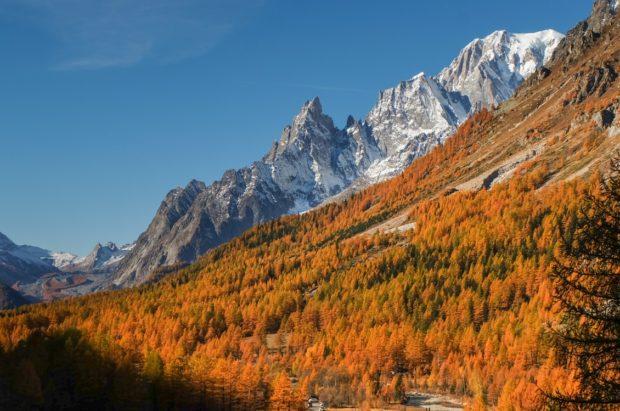 val ferret autunno colori