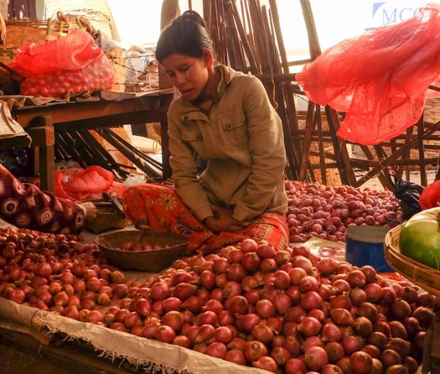 viaggio in Birmania, cipolle