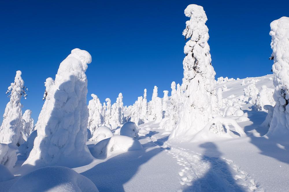 viaggio inverno lapponia ghiaccio finlandia