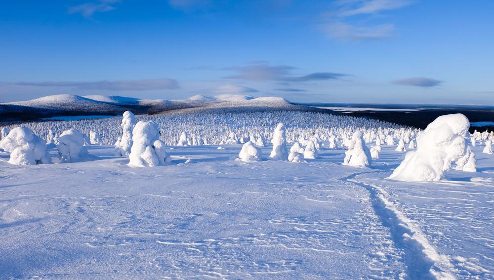 viaggio inverno lapponia pallas colline finlandia