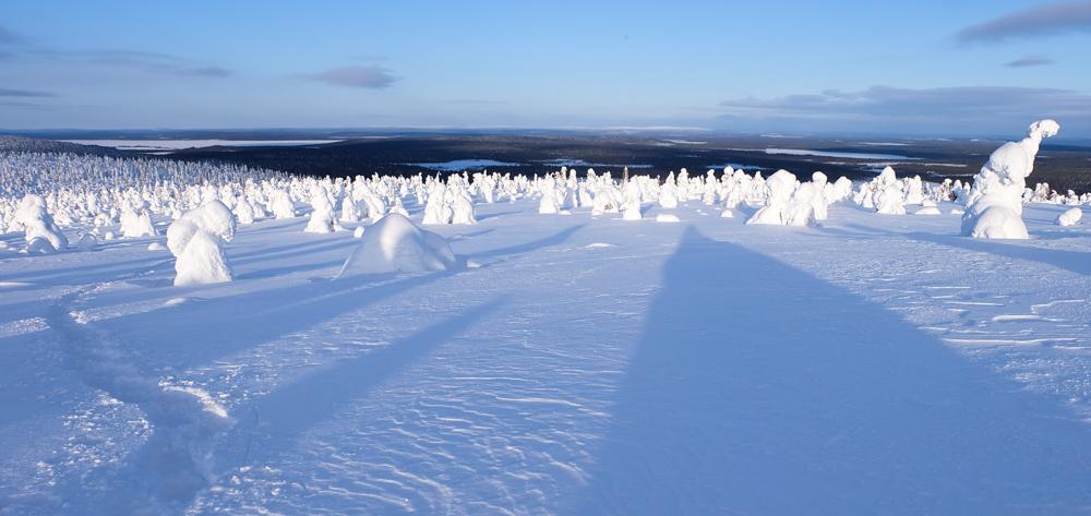 viaggio inverno lapponia pallas yllastunturi panorama tykky