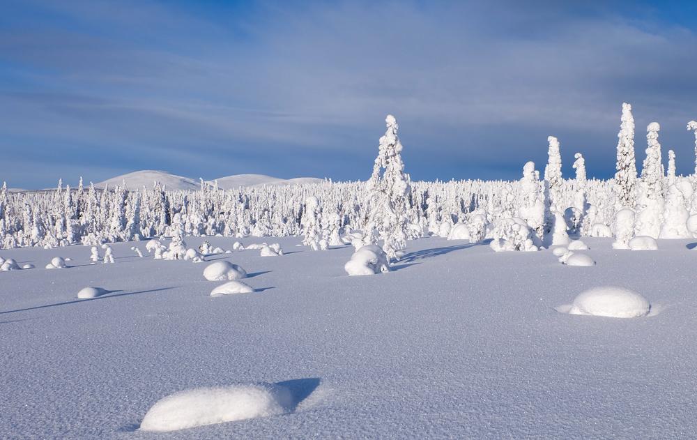 viaggio inverno lapponia pallas yllastunturi tykky panorama