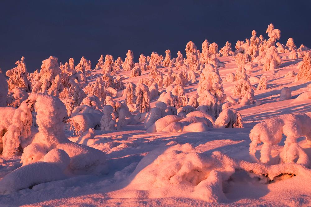 viaggio inverno lapponia pallas yllastunturi tykky tramonto